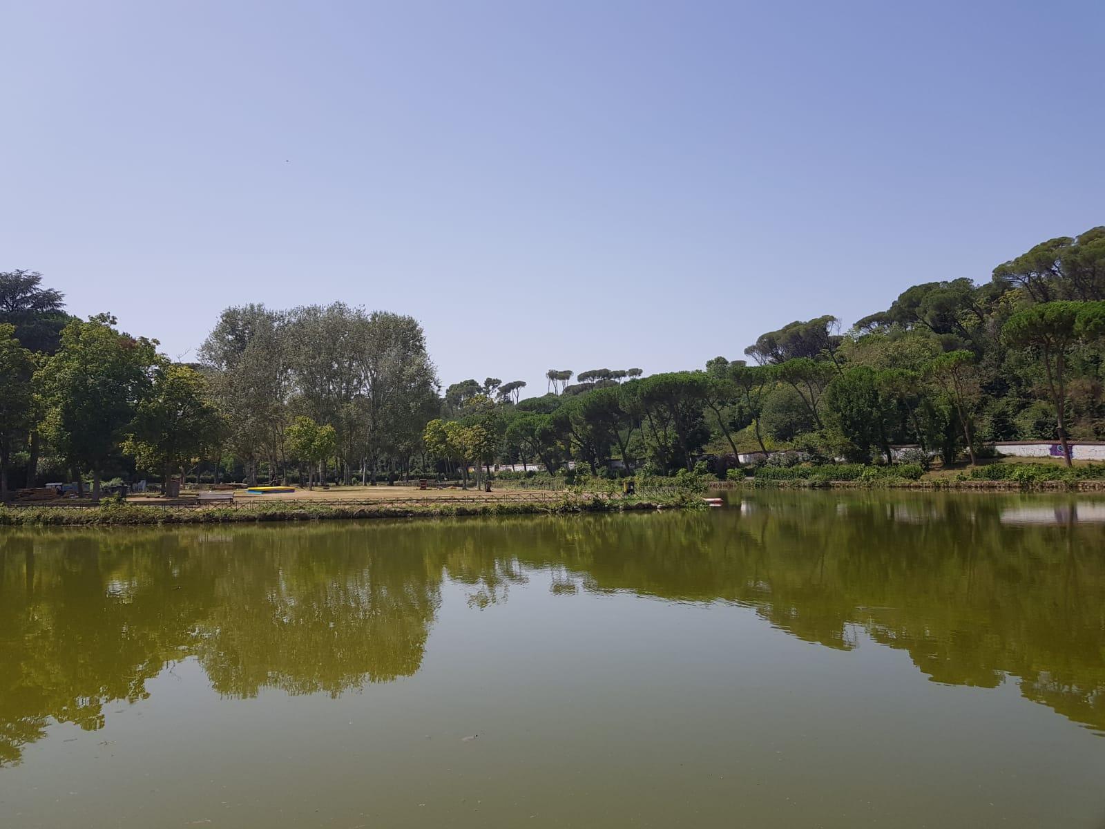 L'isolotto al centro del laghetto di Villa Ada