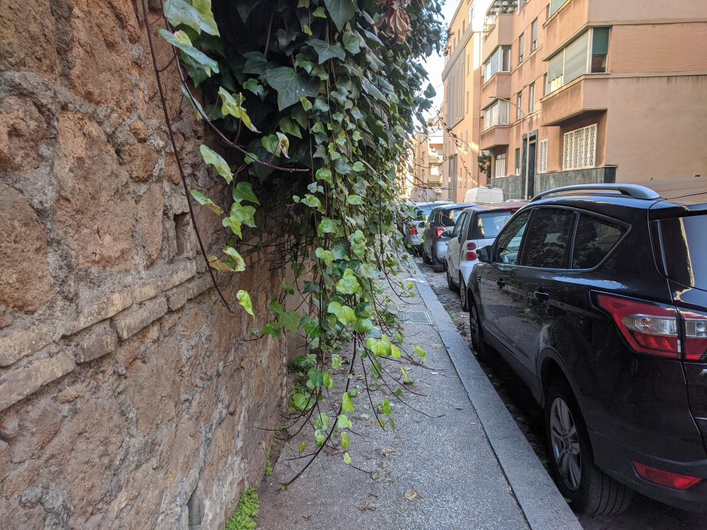Rami di edera coprono via Angelo Secchi