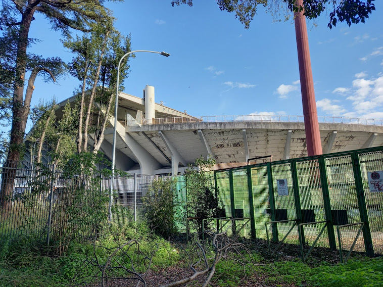 stadio flaminio comitati