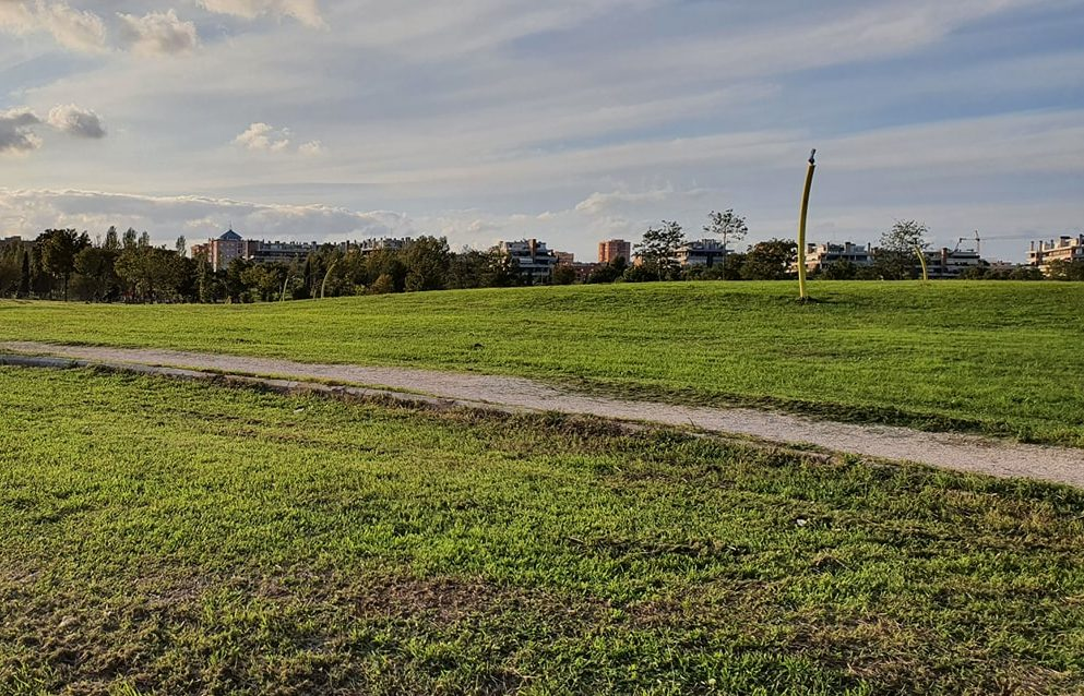 Il parco delle Sabine (foto dalla pagina Facebook Associazione Volontari parco delle Sabine/Porta di Roma)