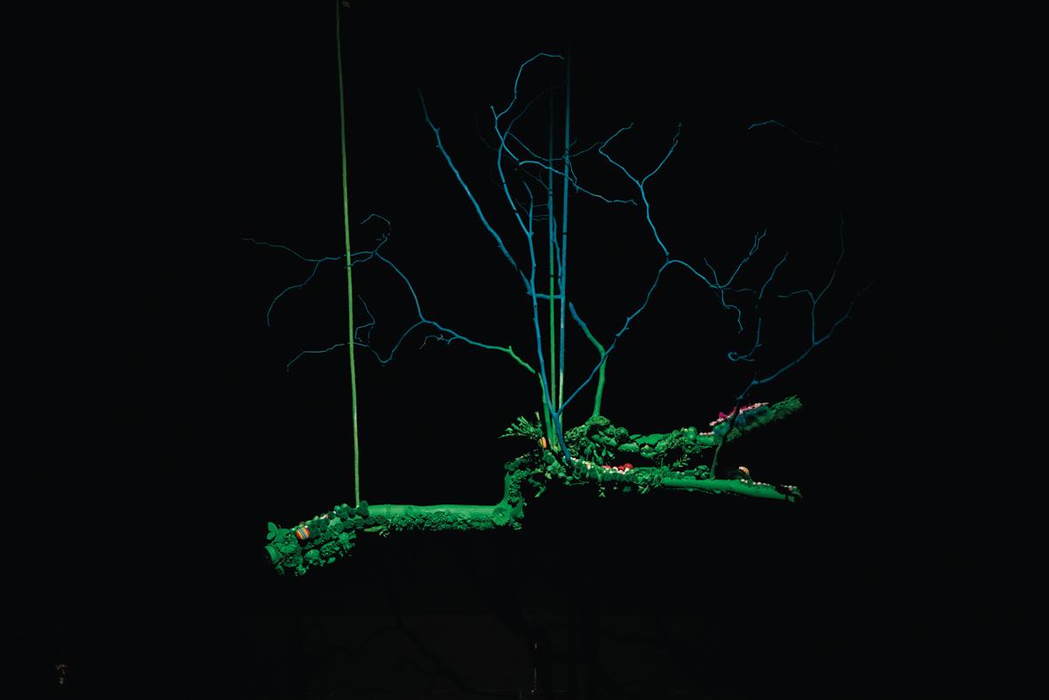 CIRCUS NATURAE-TRAPEZIO, tecnica mista, cm. 120×150