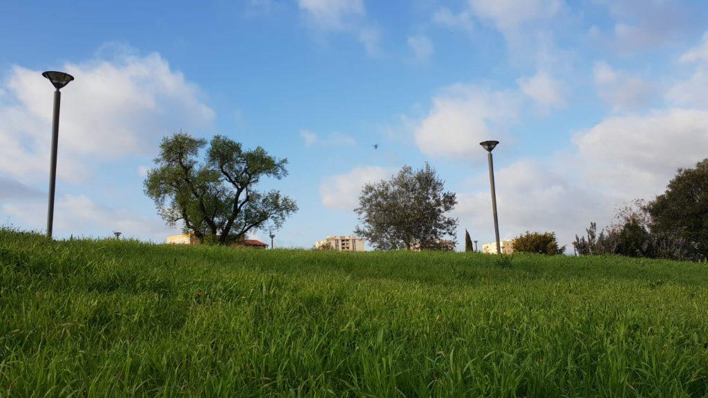 Il parco Villa di Faonte