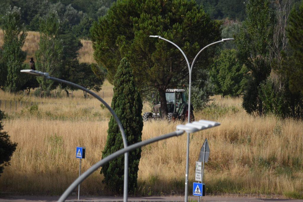 Inizia lo sfalcio dell'erba al parco delle Sabine