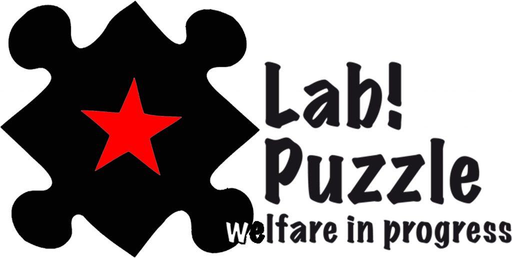 Lab Puzzle