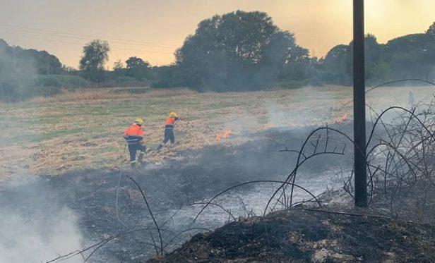 L'incendio nella Riserva della Marcigliana (foto Reporter Montesacro)