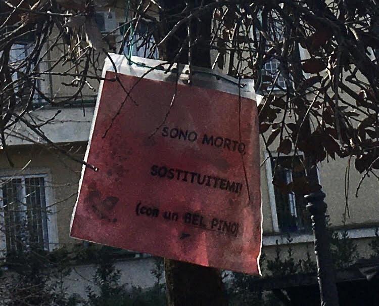 Il cartello affisso su un albero a Villa Massimo