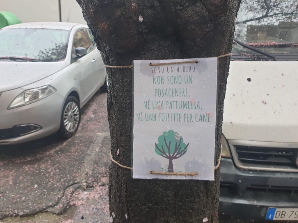 Il cartello esposto su uno degli alberi di via Catanzaro