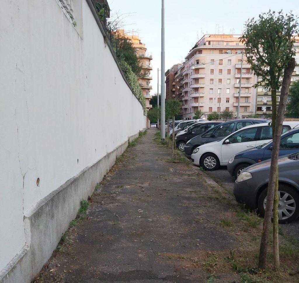 Alberi in via Como