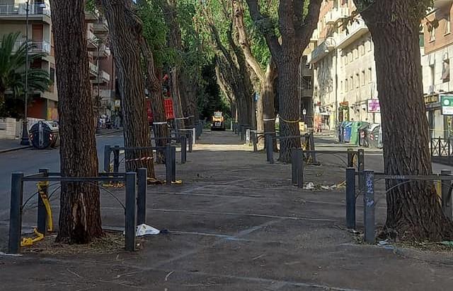Foto dalla pagina Facebook Assessorato Ambiente, Decoro, Verde Pubblico II Municipio