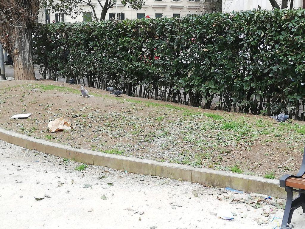 Uno scorcio di piazza Strozzi