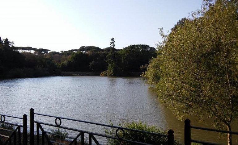 Uno scorcio del parco di Villa Pamphilj