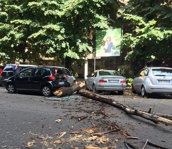 ramo caduto via Brofferio