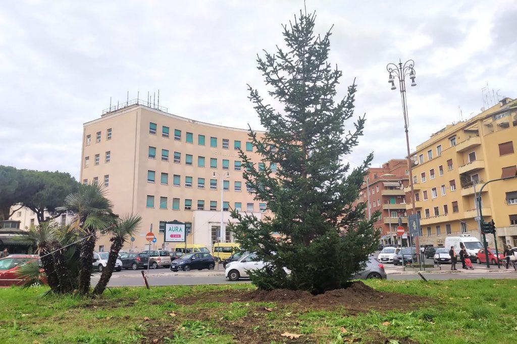 L'albero di Natale di piazzale degli Eroi