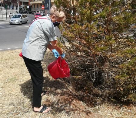 Una volontaria abbevera Fustacchio. Dalla pagina Facebook di Trionfalmente17