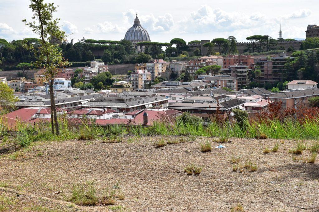 La basilica di San Pietro vista da Monte Ciocci