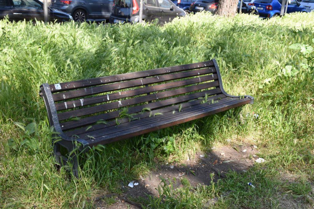 Una panchina sporca di guano e divorata dalla vegetazione incolta