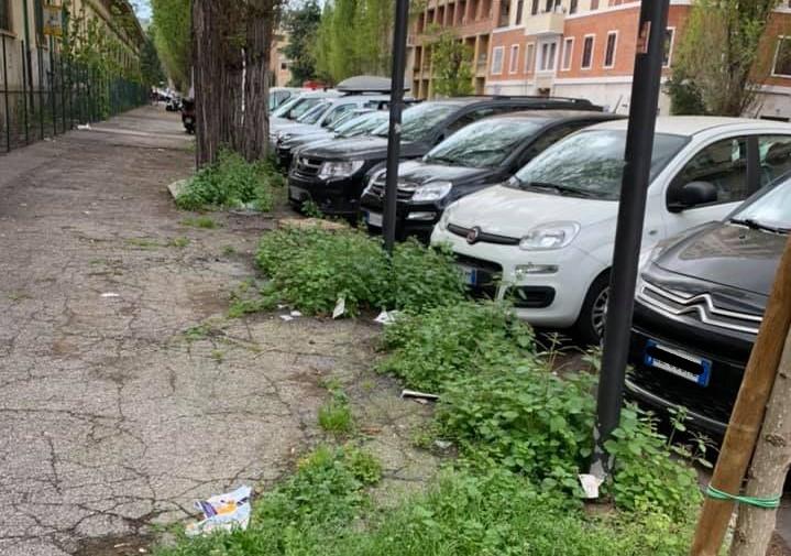 Viale Carso. Foto tratta dalla pagina Facebook Amici di Via Plava - Comitato Quartiere Della Vittoria laboratorio per Roma
