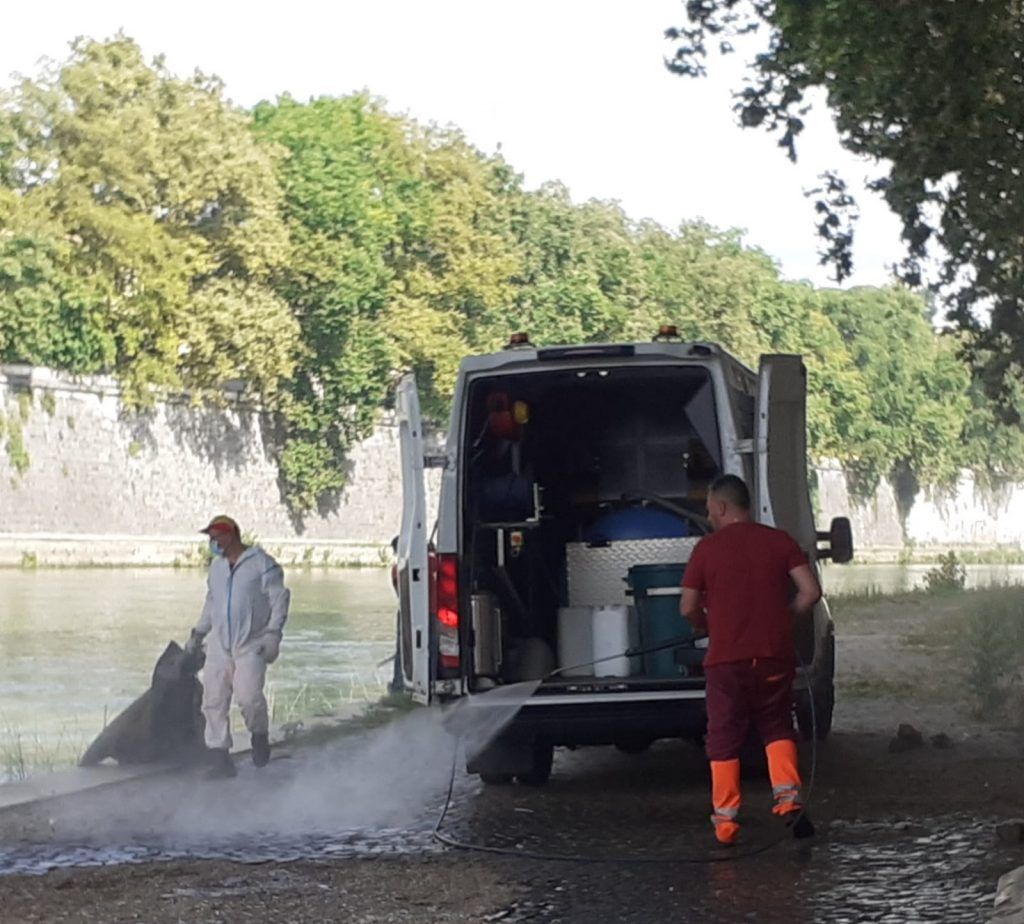 Ama al lavoro sulle sponde del Tevere. Foto dalla pagina Facebook di Daniele Diaco