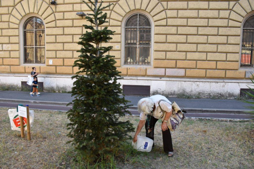 Isabella Colace innaffia l'albero dedicato a Stefano Cucchi