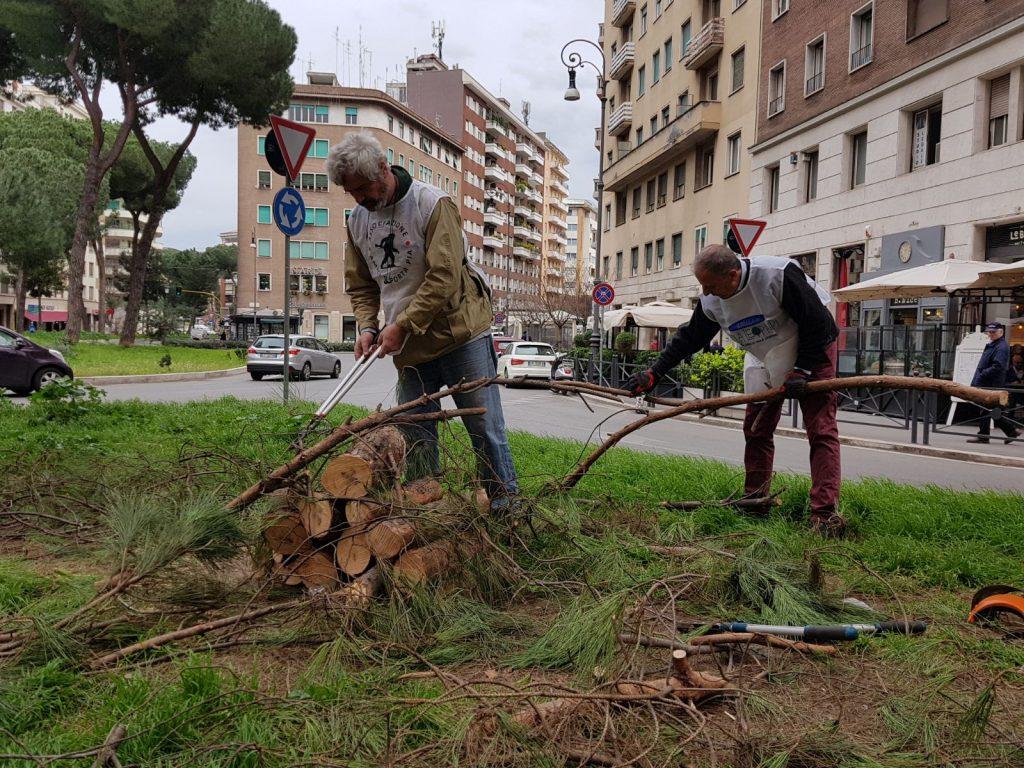 Ufficio Verde Pubblico Trieste : Verde pubblico a piazza istria la manutenzione la fanno i