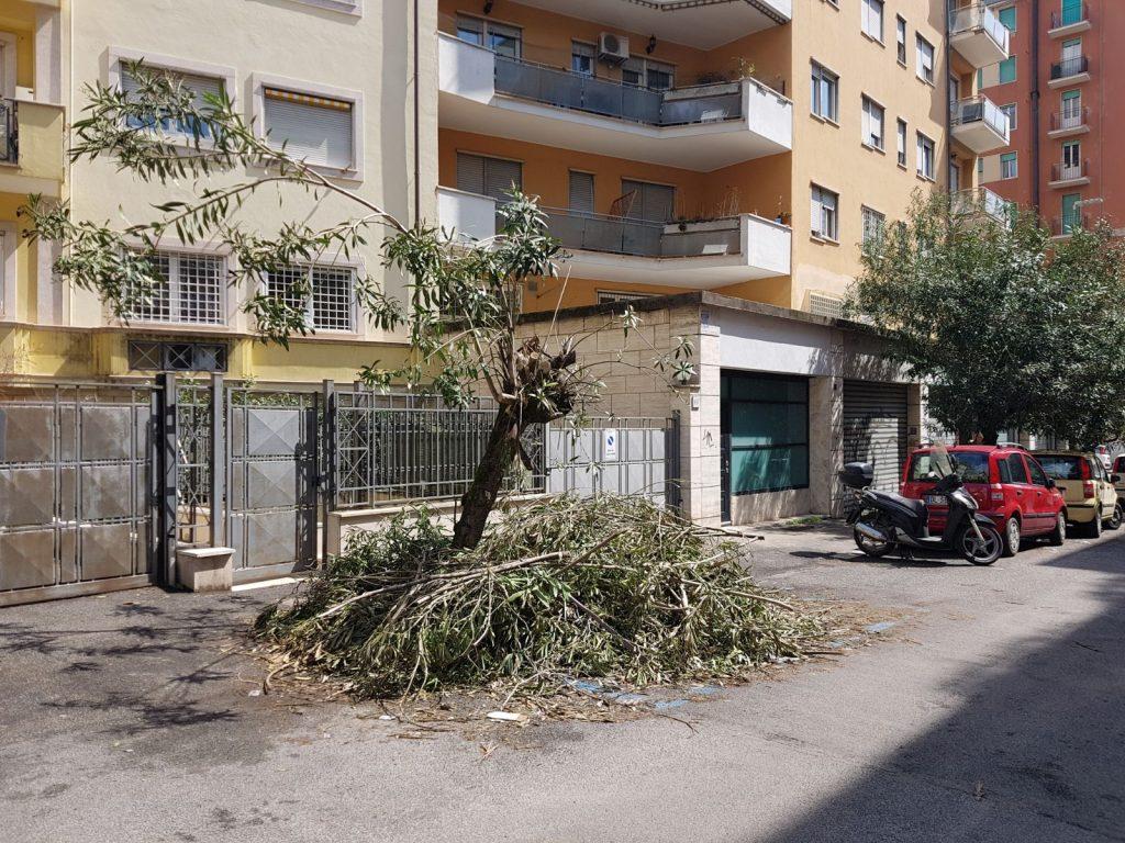 Via Mascagni