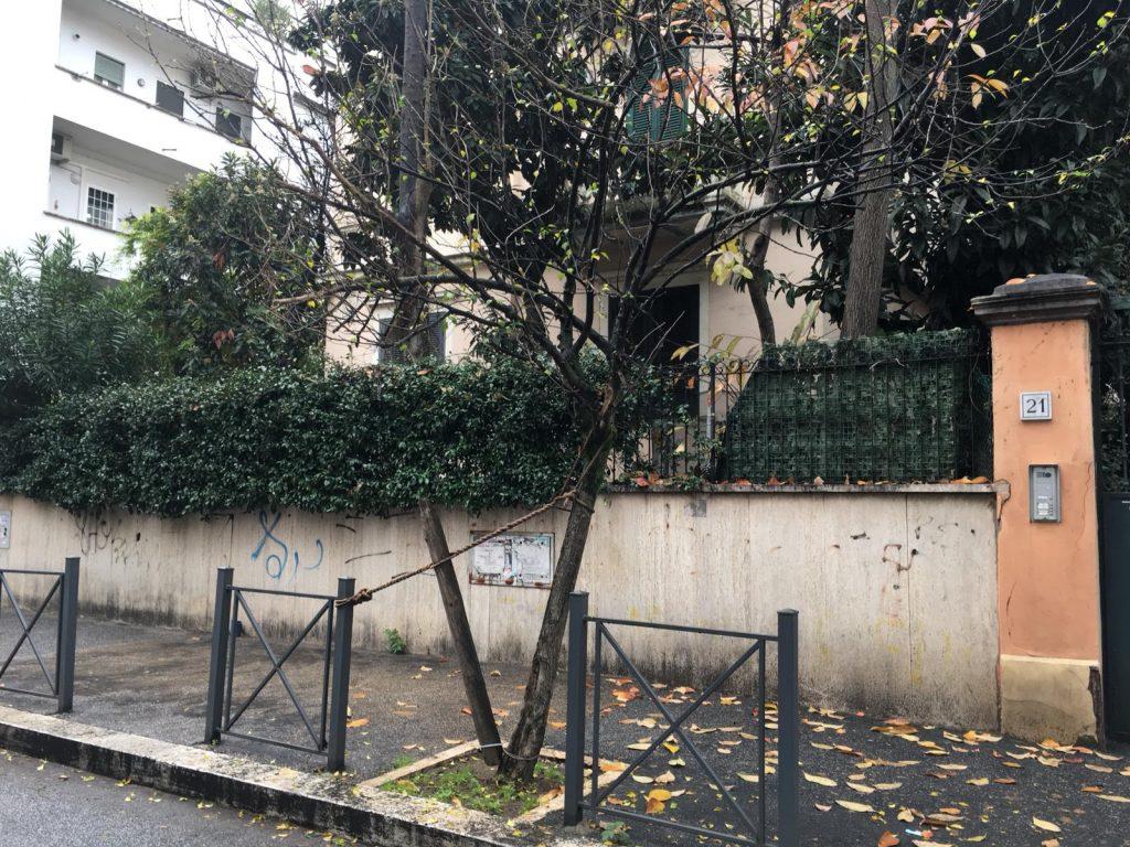 Albero legato a via Rovereto
