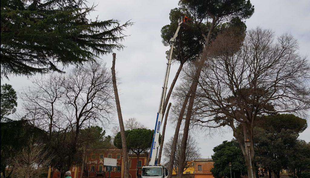 Servizio Giardini all'opera per tagliare gli alberi