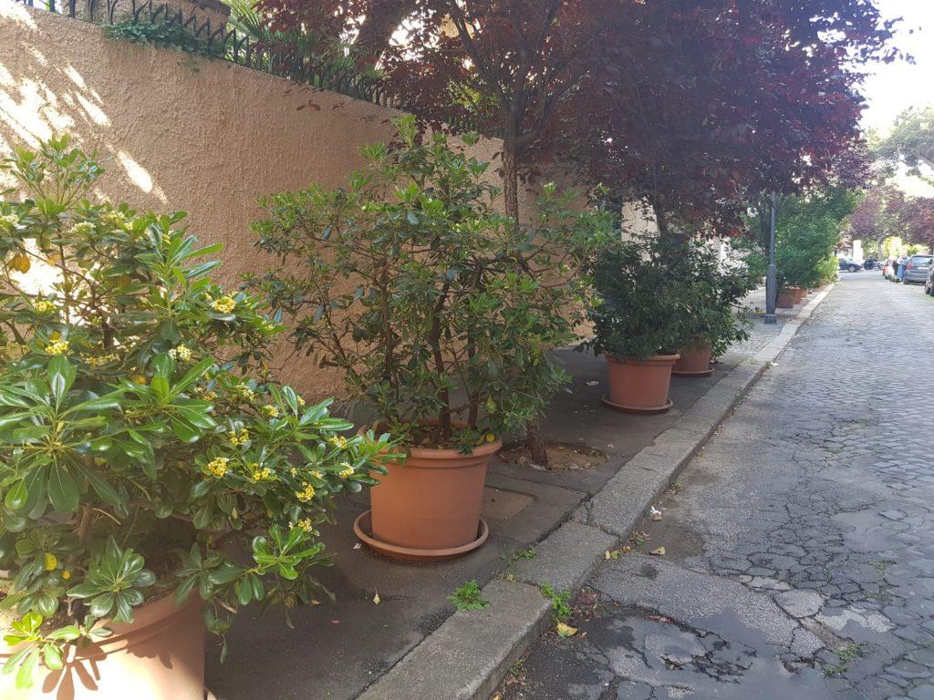 Vasi di piante poste sul marciapiede per combattere la sosta selvaggia