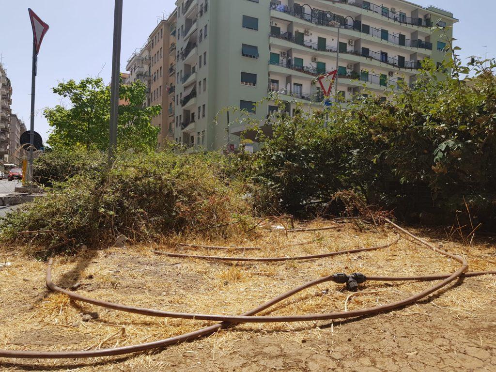 Impianto di irrigazione fuori uso e temperature elevate, ecco gli effetti sull'erba