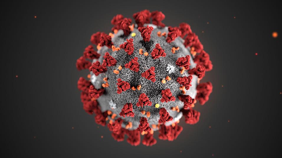 Coronavirus, oggi nel Lazio 148 nuovi casi e 1 decesso