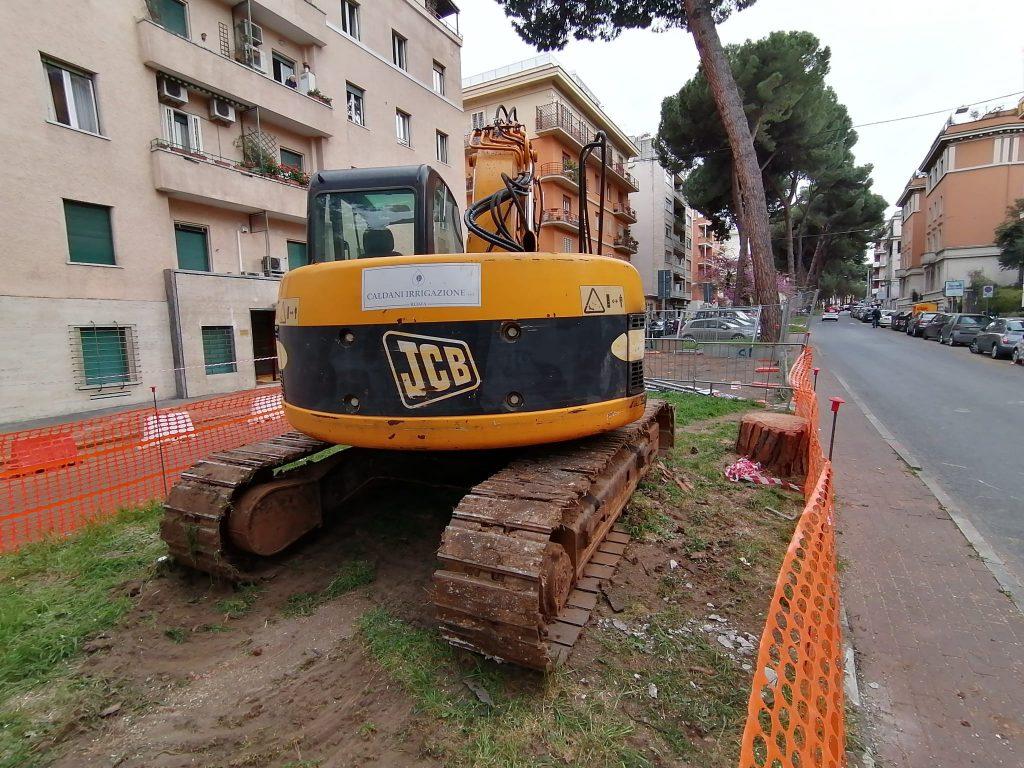 Quello che resta del pino abbattuto a Corso Trieste - Foto Lorenzo Grassi
