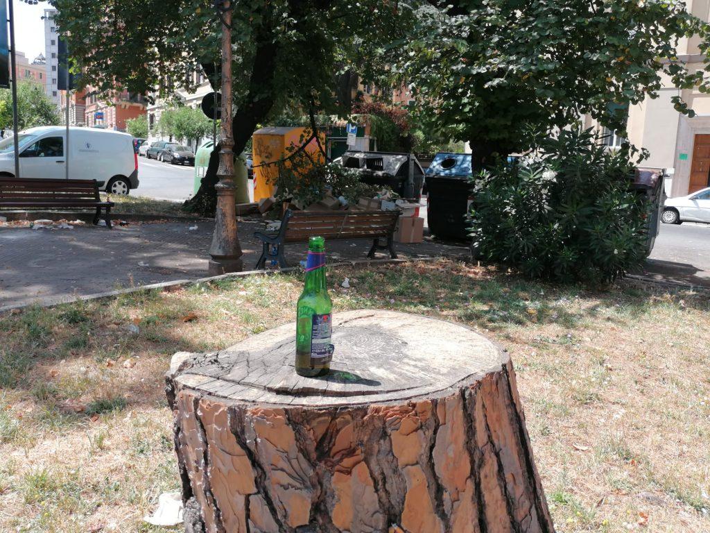 Una bottiglia di birra lasciata sopra ad un pino tagliato
